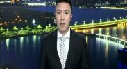 小小枸杞自强不息转型升级出口创汇-2018年2月3日