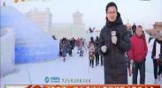 银川横城冰雪彩灯艺术节亮点多-2018年2月10日