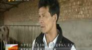 """(奋斗新时代)""""牛倌""""吴天云的致富经-2018年3月30日"""