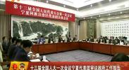 十三届全国人大一次会议宁夏代表团审议政府工作报告-2018年3月6日