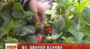 银川:发展农村经济 助力乡村振兴-2018年3月24日
