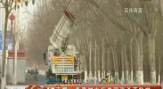 春季树木病虫害消杀开始啦-2018年3月10日