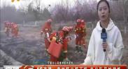4G直播:森林防火弦不松 扑火队员忙演练-2018年3月30日