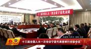 十三届全国人大一次会议宁夏代表团举行全体会议-2018年3月3日