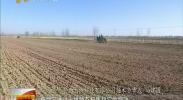 奋斗新时代 新技术 新模式 宁夏再添绿色农产品生力军-2018年3月23日
