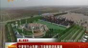 (塞上春意浓)宁夏贺兰山东麓57万亩葡萄迎春风展藤-2018年4月11日