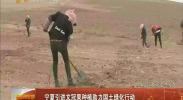 宁夏引进文冠果种植助力国土绿化行动-2018年4月7日