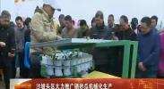 沙坡头区大力推广硒砂瓜机械化生产-2018年4月21日