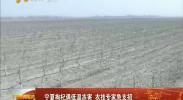 宁夏枸杞遇低温冻害 农技专家急支招-2018年4月9日