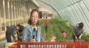 银川:休闲观光农业打造绿色发展新名片-2018年4月1日