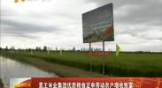 昊王米业集团优质粮食定单带动农户增收致富-2018年4月3日
