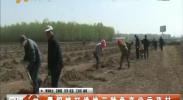 青铜峡打造地三特色产业示范村-2018年4月21日