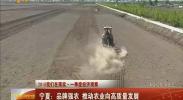 宁夏:品牌强农 推动农业向高质量发展-2018年4月22日
