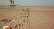 神华宁煤万人义务植树为大南湖添绿-2018年4月22日