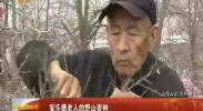 安乐德老人的野山杏树 -2018年4月5日