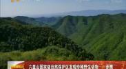 六盘山国家级自然保护区发现珍稀野生动物——赤麂-2018年4月27日