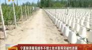 宁夏酿酒葡萄越冬不埋土技术取得突破性进展-2018年5月13日