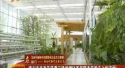银川市农产品质量三级检测体系保障市民舌尖上的安全-2018年5月8日
