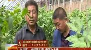 兴庆区:当好领头雁 带富众乡亲-2018年5月3日