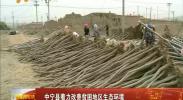 中宁县着力改善贫困地区生态环境-2018年5月7日