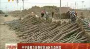 中宁县着力改善贫困地区生态环境-2018年5月8日