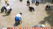 青铜峡:稻田插秧摸鱼 乡村旅游乐陶陶-2018年6月20日