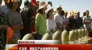 (喜迎自治区60大庆)红寺堡:硒甜瓜产业助推脱贫增收-2018年6月18日
