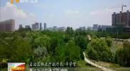 (喜迎自治区60大庆)宁夏:荒漠化和沙化土地面积双缩减-2018年6月17日