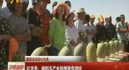 喜迎自治区60大庆·红寺堡:硒甜瓜产业助推脱贫增收-2018年6月19日