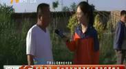 永宁望洪镇农丰村温棚排水不畅 蔬菜受损-2018年6月12日