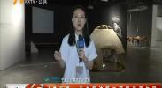 4G直播:记者探访第二届银川双年展-2018年6月9日