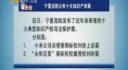 曝光台 宁夏法院公布十大知识产权案-2018年6月21日