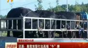 """(喜迎自治区60大庆)泾源:脱贫攻坚打出高端""""牛""""牌-180711"""