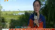 4G直播:银川章子湖公园环境卫生亟待整治-180712