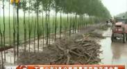 石嘴山市3条公路因暴雨导致交通中断-180724