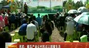 灵武:蜜瓜产业让村民过上甜蜜生活-180817