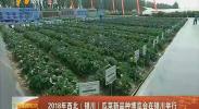 2018年西北(银川)瓜菜新品种博览会在银川举行-180801