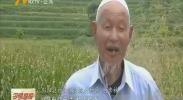 (喜迎自治区60大庆·脱贫富民新进展)古稀老人五年实现儿时梦-180807