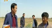 (最美人民调解员)李尚智:田间地头的法律传递者 -180830