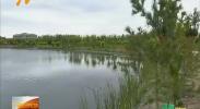 (自治区污染防治重点任务督查)中卫市在水环境改善上要补齐短板-180820