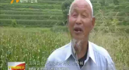 (喜迎自治区60大庆)古稀老人五年实现儿时梦-180812