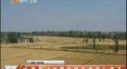 """首届""""中国农民丰收节""""来了-180921"""