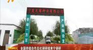 全国供销合作总社调研组来宁调研-180903