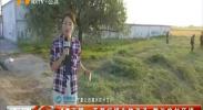 4G直播:开展病媒生物消杀 整治农村环境-180912