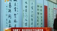 """""""凤凰腾飞""""银川市民间文艺作品展开展-181031"""