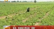 """吴忠:科技助力旱区发""""药财""""-181007"""