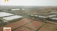 农发行备足12亿元确保全区粮油收购-181029