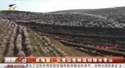 西海固:从荒山秃岭迈向绿水青山-181124