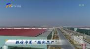 """探访宁夏""""绿色工厂""""-181214"""