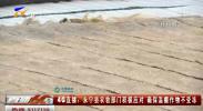 4G直播:永宁县农牧部门积极应对 确保温棚作物不受冻-181205